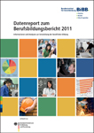 Cover: Datenreport 2011